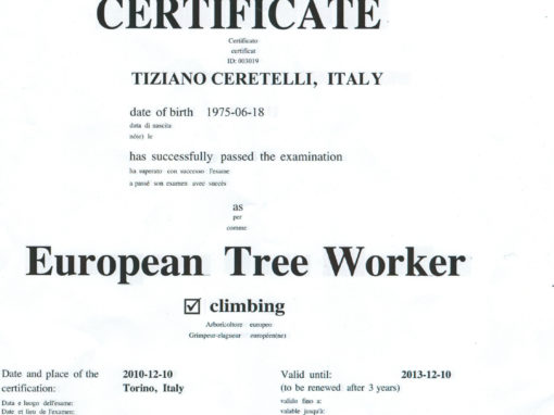 Cerificato ETW dell'European Arboricoltural Council