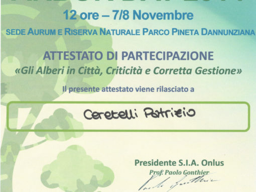 Arborday 2014 Pescara – Patrizio Ceretelli