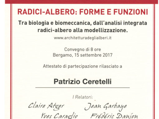 Attestato Arboriculture: That's Cool! di Patrizio Ceretelli