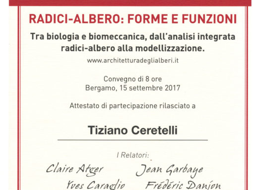 Attestato Arboriculture: That's Cool! di Tiziano Ceretelli